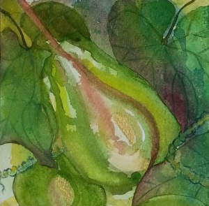 Watercolour Choko