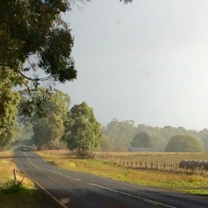 Photo Country Road Victoria